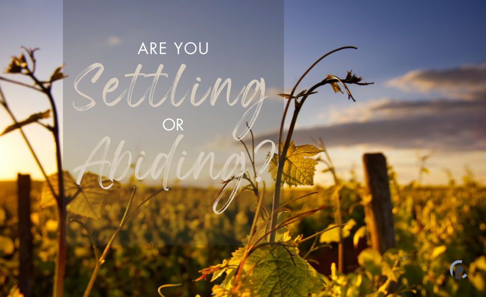 Are you settling or abiding?