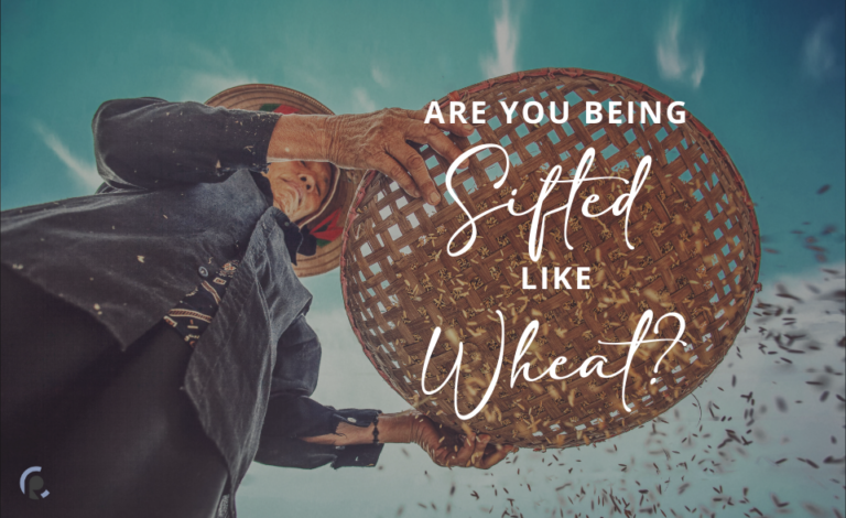 Are you being sifted like wheat?