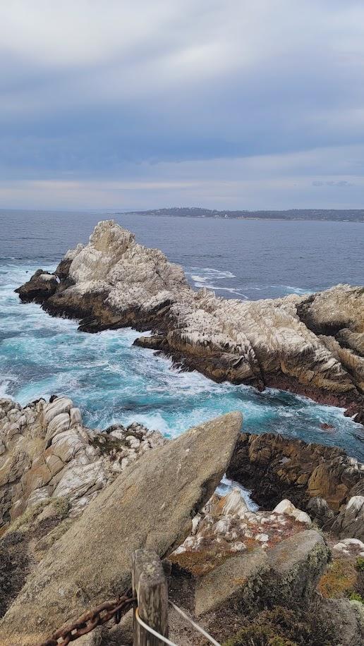 Views and vistas of Point Lobos National Preserve